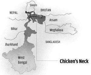 chickensneck-op