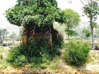Ruins of Shiv Temple at fort Jagtpal Singh