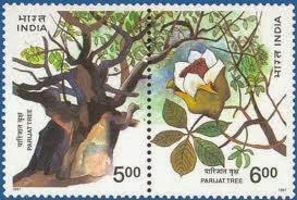 Stamp on Parijaat Tree